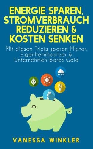 Energie sparen, Stromverbrauch reduzieren & Kosten senken - Mit diesen Tricks sparen Mieter, Eigenheimbesitzer & Unternehmen bares Geld (Ratgebr)